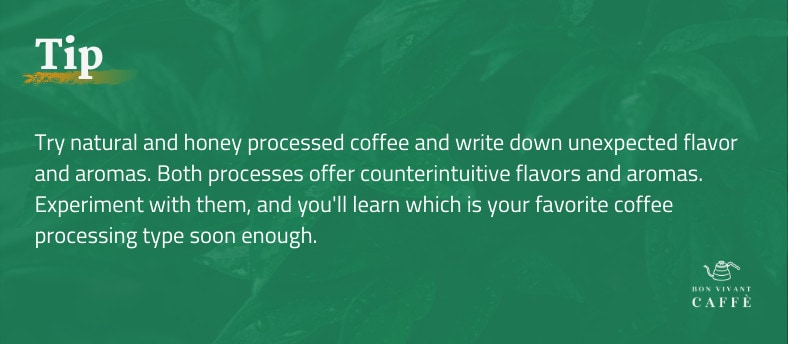 Tip: Try natural and honey processed coffee and write down unexpected flavor and aromas. Both processes offer counterintuitive flavors and aromas. Experiment with them, and you'll learn which is your favorite coffee processing type soon enough.