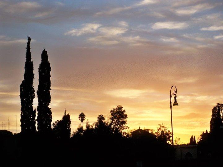 A sunset in Rome, close to Il Foro Romano