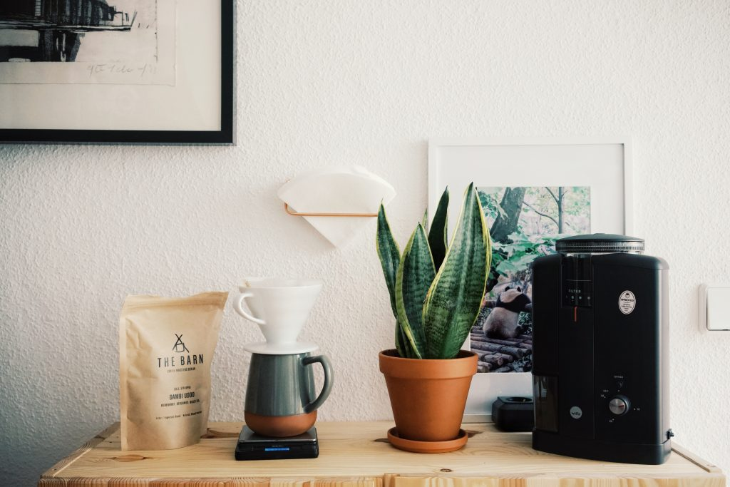 A pour over coffee setting with a specialty coffee bag, a dripper, and a suculenta